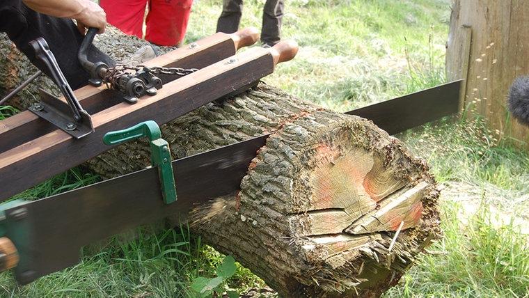 Eine alte Einhand-Säge. © NDR Fotograf: Carsten Valk