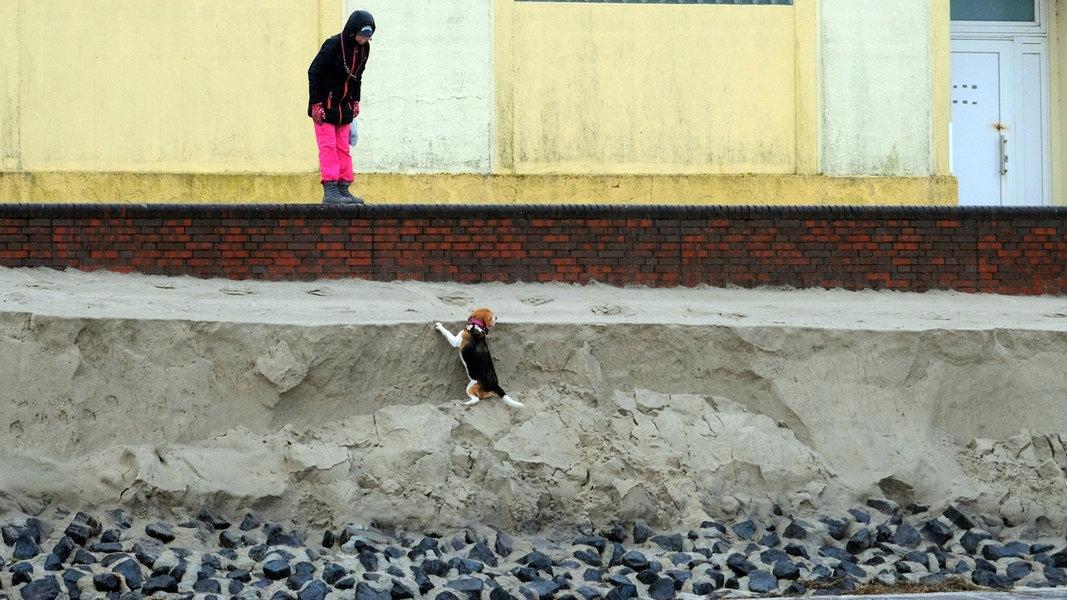 Urlauber sammelt Spenden für Wangerooge