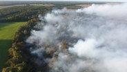 Rauchwolken über einem Wald.