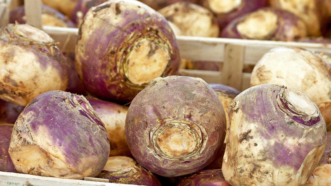 Steckrüben: Wintergemüse für Eintopf und Mus