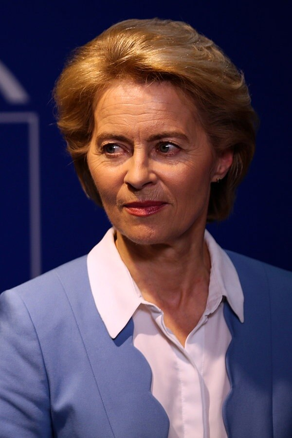 Kommentar zum Green Deal der EU-Kommission