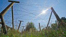 Stacheldrahtzaun an der ehemaligen innerdeutschen Grenze. © dpa Fotograf: Ole Spata