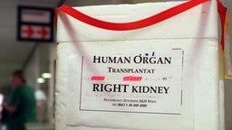 Organspendebehälter auf einem Tisch © picture-alliance / ZB Foto: Kalaene Jens