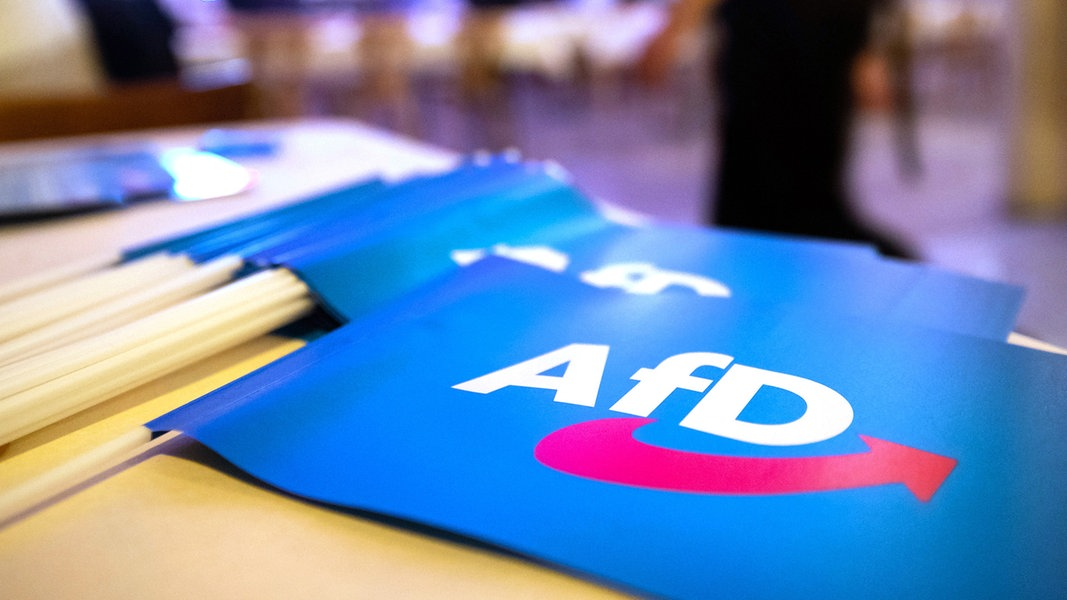 Verfassungsschutz: AfD teils rechtsextrem