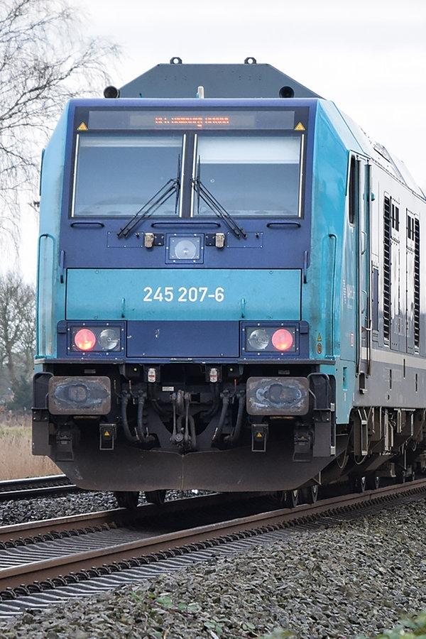 Zug erfasst Schäfer auf Strecke nach Sylt