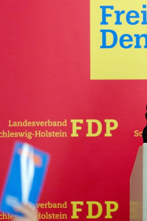Fdp Schleswig