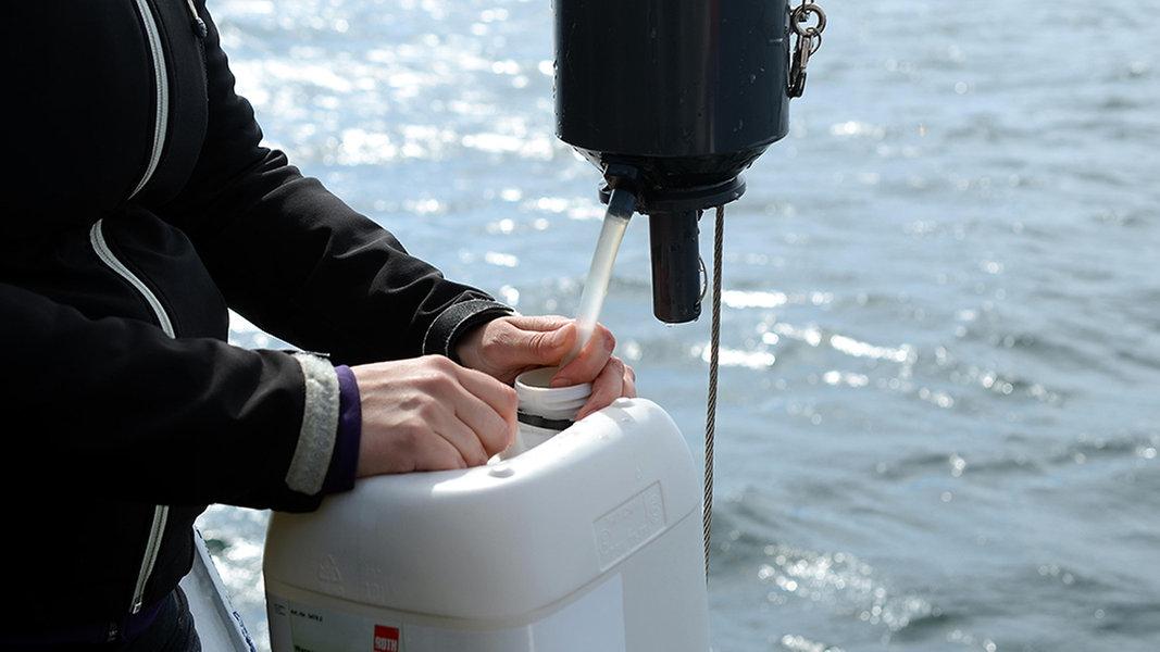 Bald schwimmendes Labor auf der Elbe