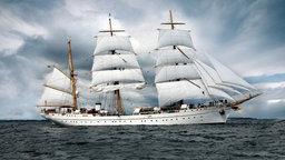 """Das Schulschiff der Marine, die """"Gorch Fock"""", läuft unter Segeln über die Kieler Förde zu. © dpa-Bildfunk Foto: Carsten Rehder"""