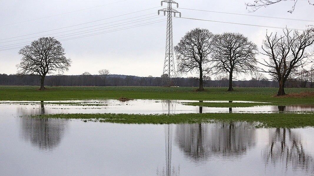 Dauerregen - und trotzdem trockene Böden