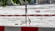 Die Promenade ist vom Hochwasser des Inns überspült. © picture alliance/dpa   Armin Weigel Foto: Armin Weigel