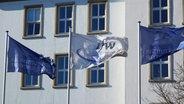 Drei wehende Flaggen vor dem Institut für Weltwirtschaft in Kiel © NDR Foto: Fin Walden