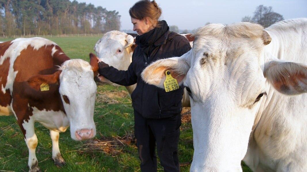 Veganerin züchtet Schlachtvieh