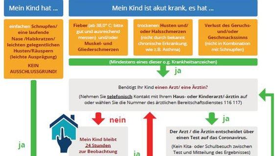 Schnupfen In Schule Und Kita Corona Regeln Werden Gelockert Ndr De Nachrichten Schleswig Holstein Coronavirus