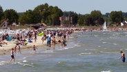Ein Strand in Schleswig-Holstein überfüllt von Badegästen. © NDR