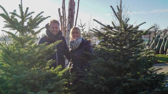 Weihnachtsbaum Kaufen Kiel.Mieten Statt Kaufen Weihnachtsbäume Aus Rellingen Ndr De