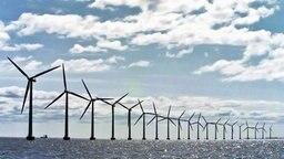 Ein Offshore-Windpark © dana press photo Foto: dana press photo