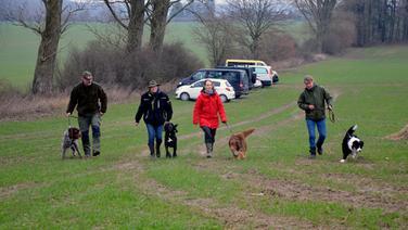 Vier Hundehalter laufen mit ihren Wolfsspürhunden auf einer Wiese. | NDR