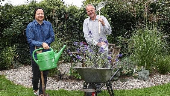 Was Hilft Gegen Schadlinge Im Garten Ndr De Ratgeber Garten Schadlinge