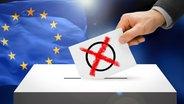 Wahlkarte mit Wahlkreuz wird in eine Wahlurne gesteckt, dahinter eine Europaflagge (Bildmontage) © Fotolia, colourbox Foto: mozZz, niyazz