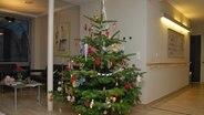 Ein Weihnachtsbaum wird in einem Hopiz geschmückt © NDR Fotograf: Andreas Gervelmeyer