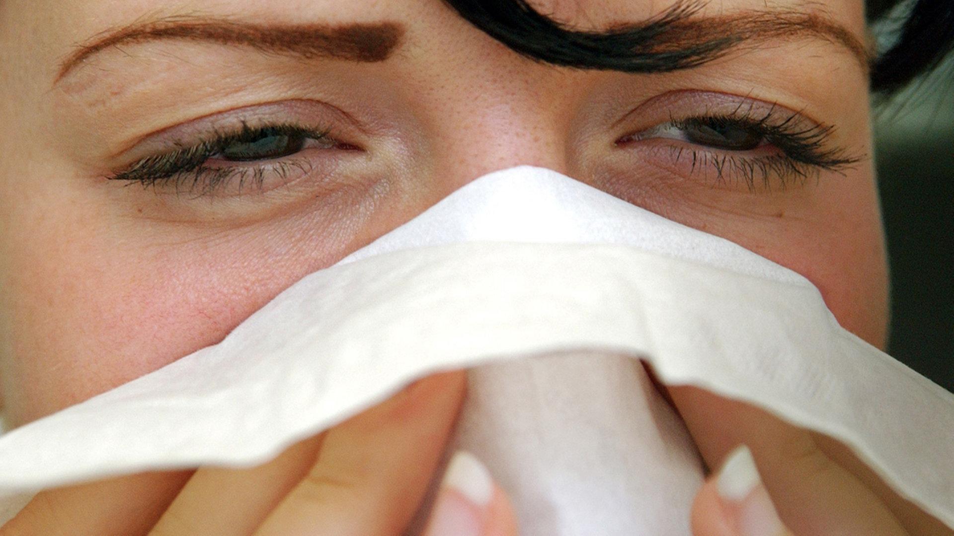 Nasenscheidewand loch gefährlich in Perforation in