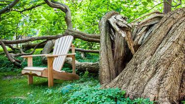 Steg am See im Sonnenuntergang. © Jenny Sturm/fotolia Fotograf: Jenny Sturm