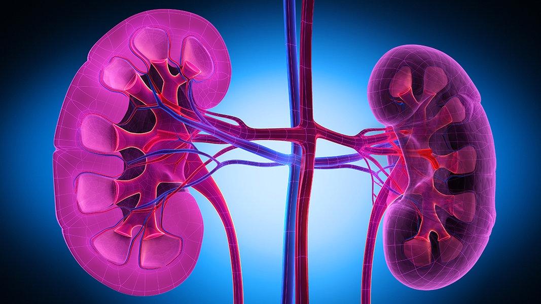 Diät für Nieren- und Bluthochdruckpatienten