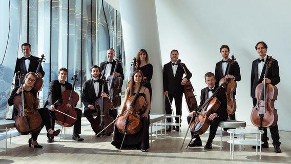 Ensemble picture: the NDR ElphCellists of the NDR Elbphilharmonie Orchestra © ElphCellisten Photo: Johannes Coda
