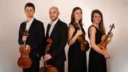 Die Musikerinnen und Musiker des Vigato Quartetts. © Winfried Hyronimus Foto: Winfried Hyronimus