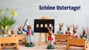 Eine Hasenschule. © NDR Foto: Anja Deuble