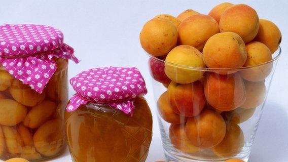 steinobst aprikose pfirsich und pflaume ratgeber verbraucher. Black Bedroom Furniture Sets. Home Design Ideas