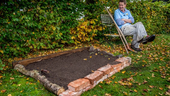 Ein Beet Im Rasen Anlegen Ndr De Ratgeber Garten Zierpflanzen