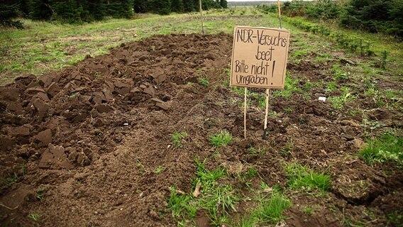 Den gartenboden umgraben oder lockern ratgeber for Boden neu aufbauen