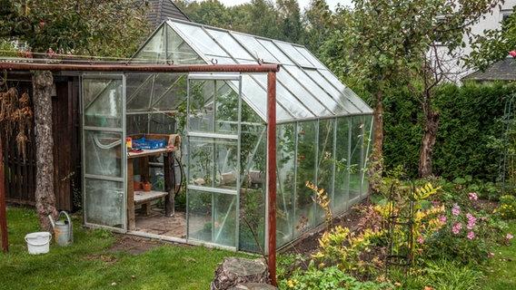 Das Gewachshaus Fit Furs Fruhjahr Machen Ndr De Ratgeber Garten