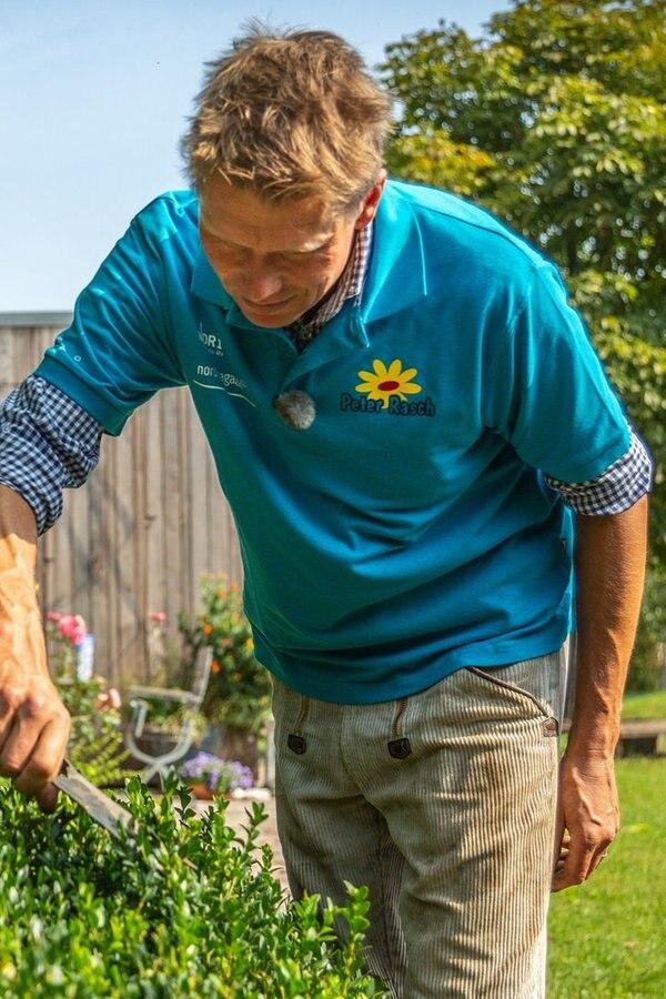 Tipps für die Gartenpflege im Herbst