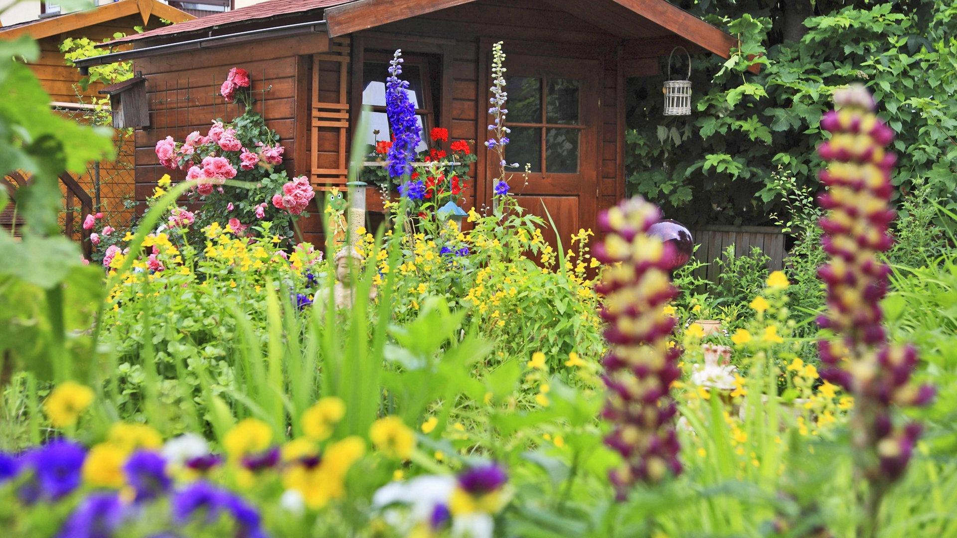 Kleingarten Was Kostet Es Und Wo Gibt Es Freie Parzellen Ndr De Ratgeber Garten