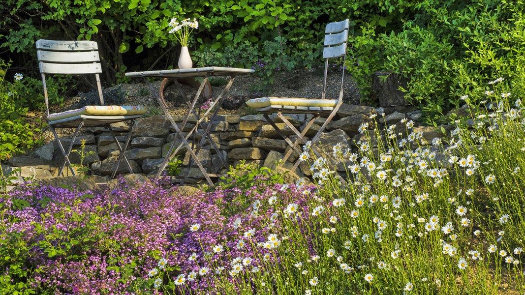 Pflegeleichter Garten Mit Den Richtigen Pflanzen Ndr De