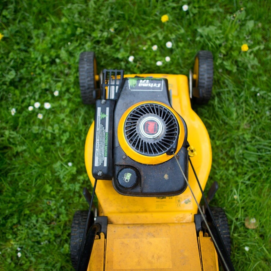 Rasenmaher Kaufen Akku Benzin Oder Elektro Antrieb Ndr De Ratgeber Verbraucher