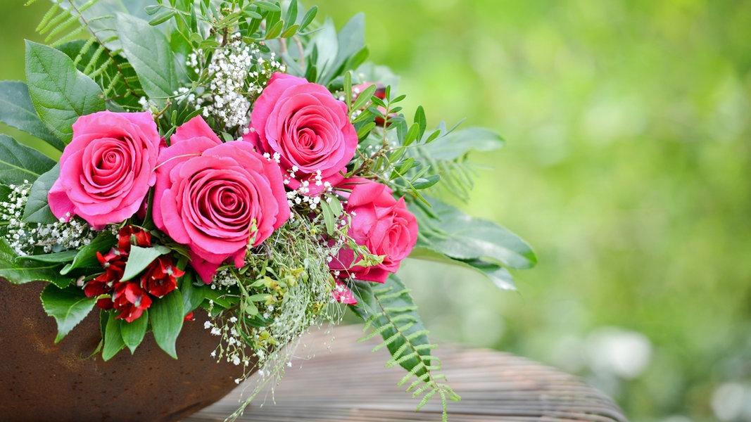 rosen in der vase lange frisch halten ratgeber garten zierpflanzen. Black Bedroom Furniture Sets. Home Design Ideas