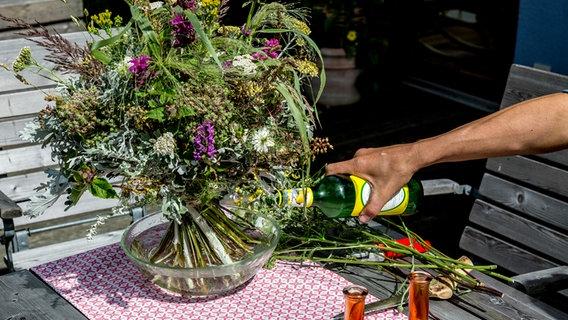 Schnittblumen Langer Frisch Halten Ndr De Ratgeber Garten