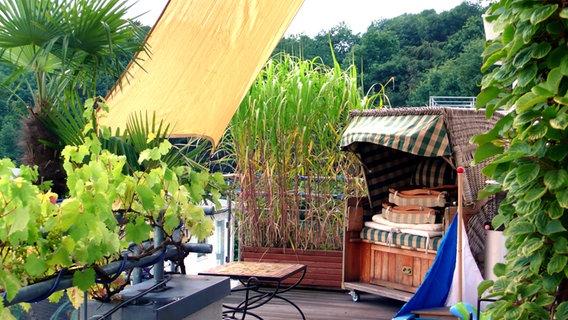 sichtschutz auf dem balkon durch pflanzen ratgeber garten. Black Bedroom Furniture Sets. Home Design Ideas