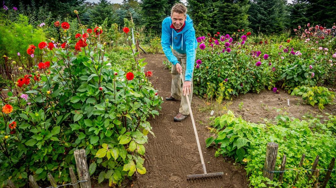 Neue Wege Für Den Garten Anlegen | NDR.de   Ratgeber   Garten