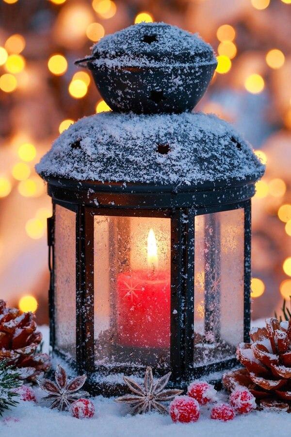 Garten Weihnachtsbeleuchtung
