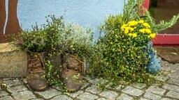 Bepflanzte Blumenkübel individuelle blumenkübel für den herbstgarten ndr de ratgeber