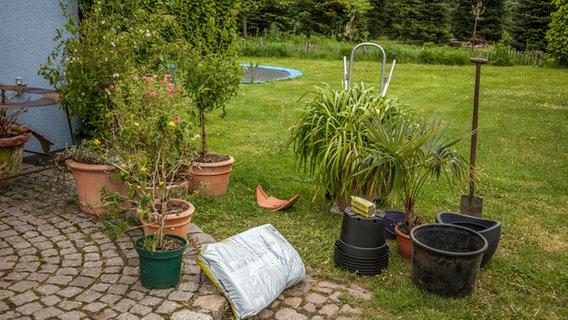 Den garten richtig gie en und bew ssern - Topfpflanzen garten ...