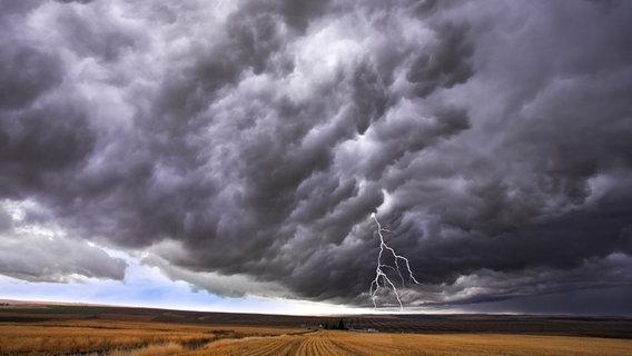 Gewitterwolke und Blitz über Landschaft © Colourbox