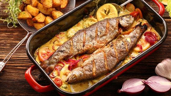 Fisch Richtig Zubereiten Die Wichtigsten Garmethoden Ndrde