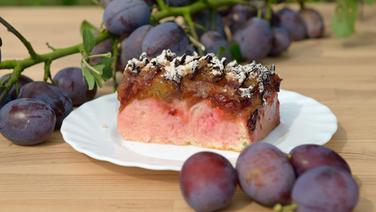 Rezept Pflaumenkuchen Mit Quark öl Teig Ndrde Ratgeber Kochen