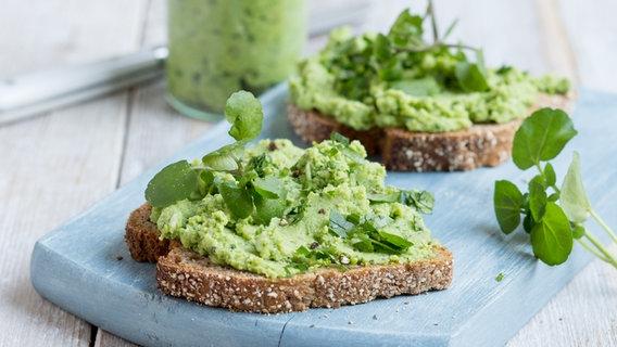 Rezept Brokkoli Brunnenkresse Aufstrich Ndr De Ratgeber Kochen