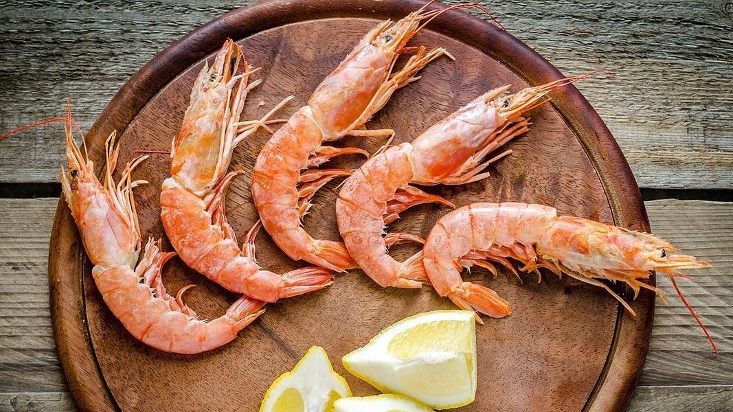 Unterschied Garnelen Shrimps